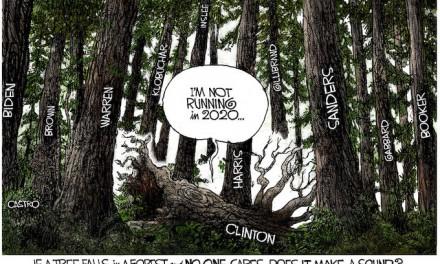 Dead Tree!