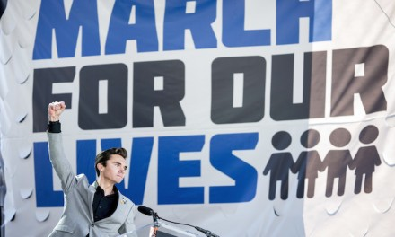 David Hogg mocks, insults Virginia gun-rights rallygoers: 'Put down the gun and pick up a book'