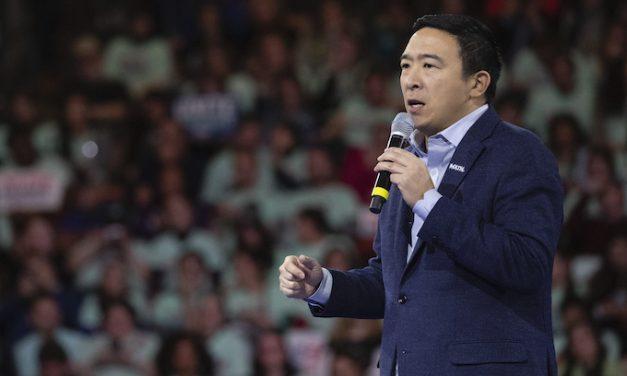 Yang finds new career as political pundit at CNN