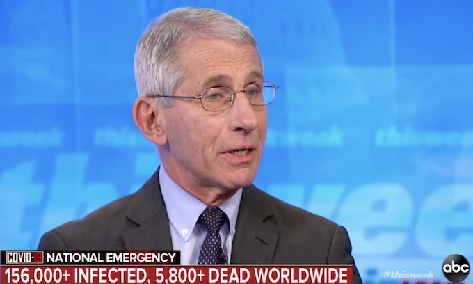 Anthony Fauci urges coronavirus 'national shutdown'
