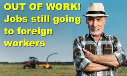 Millions unemployed, but U.S. still giving jobs to foreign workers; UCLA prof blasts Trump