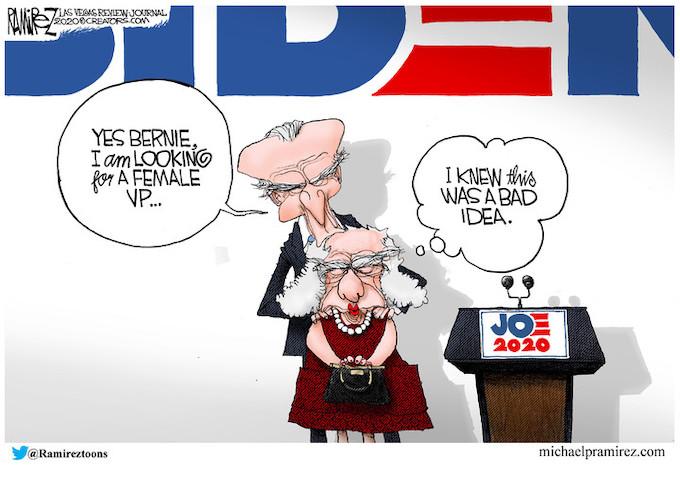 Meet Biden's VP
