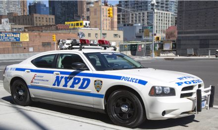 White Detective investigating Queens burglary attacked from behind by black man with stick