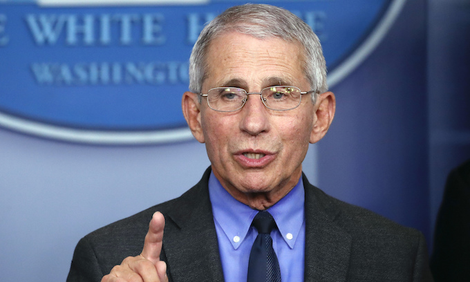 Fauci to Orthodox Jews: How about less