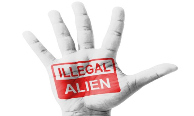 Is it a contest? Which state is doing more for illegal aliens?