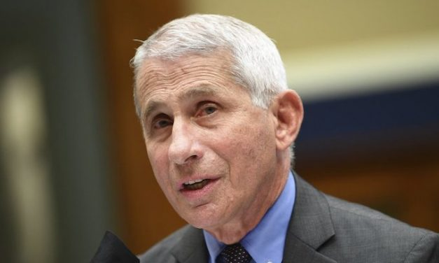 Fauci says pandemic highlights racism's impact