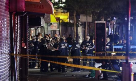 Ambush: NYPD officer stabbed, two others shot