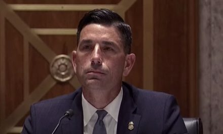 DHS chief Chad Wolf testifies to Congress on sending federal police to quell riots in Democrat run cities
