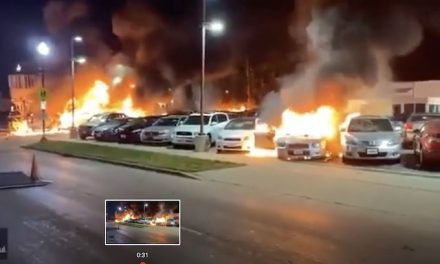Kenosha dealership owner says violent protests caused $1.5M in damage; 50+ cars torched