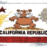 Don't Blame Climate Change For Killer Wildfires