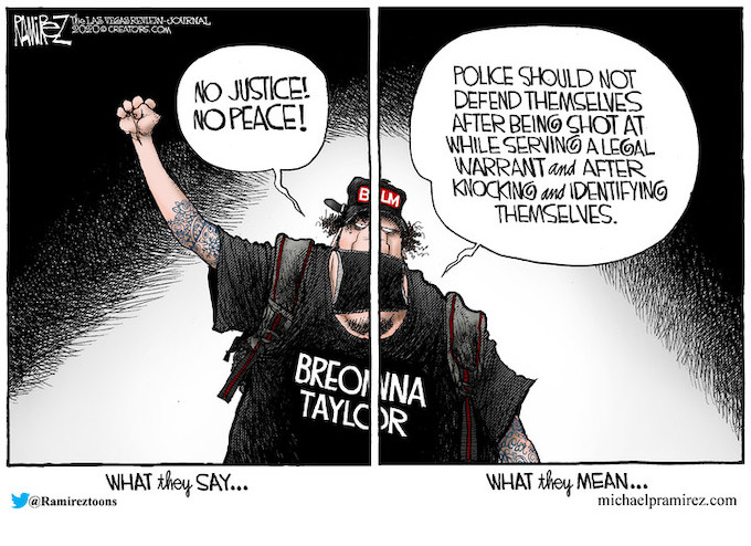 BLM Rioter