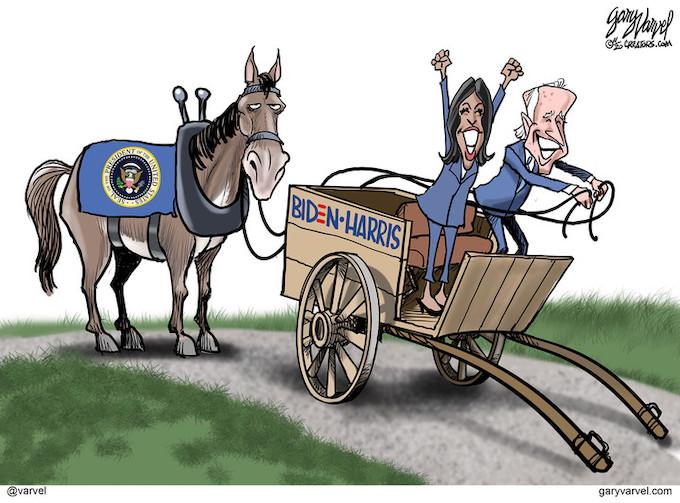 Biden's cart
