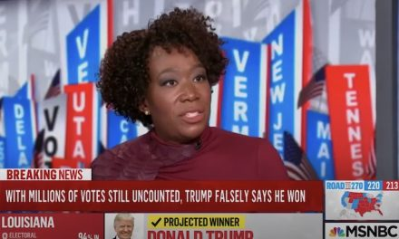 Joy Reid, 'Uncle Clarence' and the racism of the unhinged Democrat media