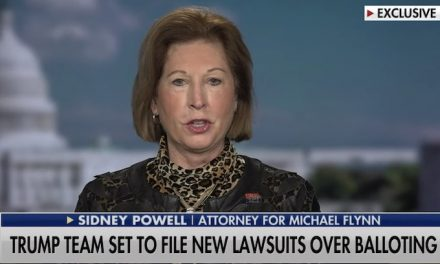 "Attorney Sidney Powell Drops Massive Bomb: ""We've Identified 450,000 Ballots That Miraculously Only Have a Vote For Joe Biden"""