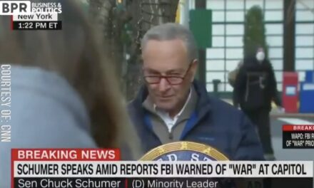Schumer heckled live on CNN