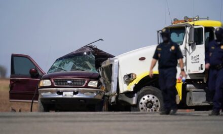 Federal agents investigating major California highway crash that killed 13 illegal aliens