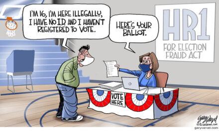 Ms. Nancy running slow Joe's election orders