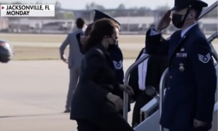 Kamala Harris Breaks Tradition, Disrespectfully Refuses to Salute Military on Air Force Two