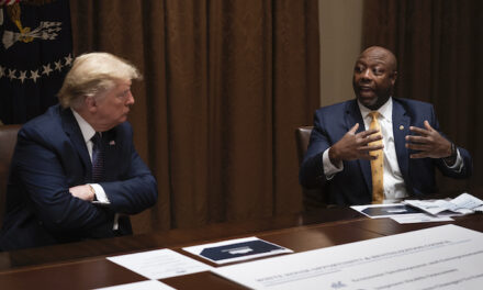 On the wings of leftist trolls, GOP Sen. Tim Scott rises