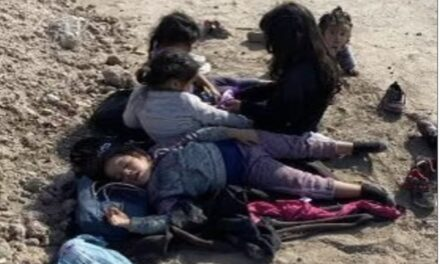 Texas farmer, 75, finds five abandoned migrant girls under the age of 7 —  including a baby — crying and hungry on his land