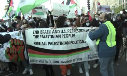 Black Lives Matter condemns Israel's 'settler colonialism' while declaring 'solidarity' with Palestinians