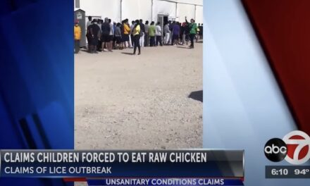 Border protesters urge closing of emergency intake shelter for children amid reports of Covid, lice and other diseases