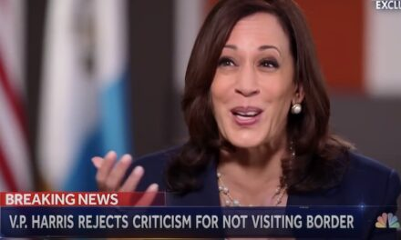 VP Harris, What About the 'Root Cause' of Urban Homicide?