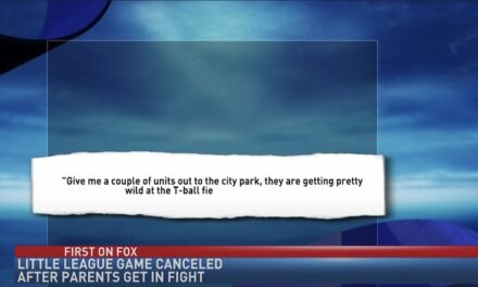 Parental fight causes Kentucky City to end T-ball tournaments