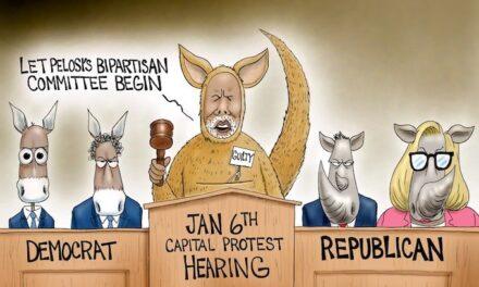 Pelosi Politics