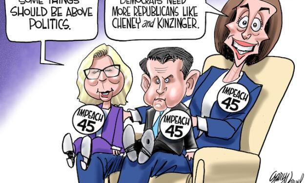Nancy's Puppets