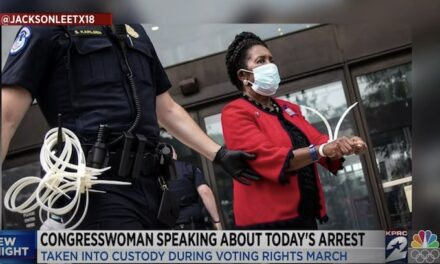 Stunt: Sheila Jackson Lee arrested at voting rights protest near Capitol