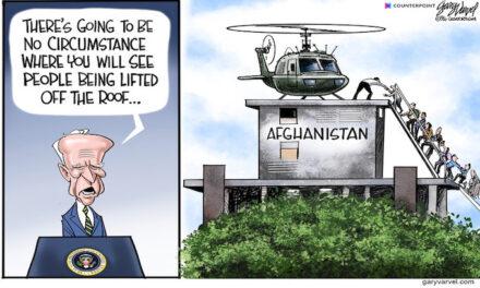 Biden's ladder