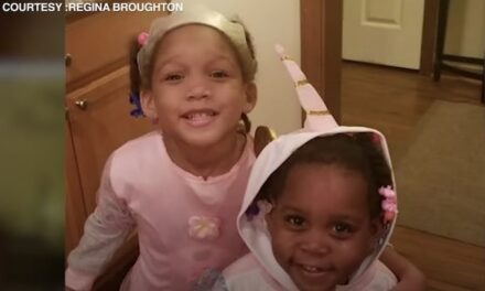 Chicago: 'What type of animal could do this?' asks grandmother of 6- and 7-year-old girls shot Sunday