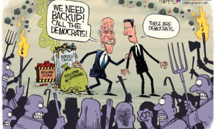 Biden's Mob